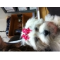Cat Dog Hair Accessories Hair Bow Dog Clothes Birthday Holiday Bowknot Costume For Pets