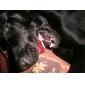 Cães Brinquedos para Animais Bola / Brinquedos para roer Bola de Tenis Vermelho Téxtil