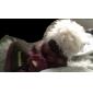 Cães Súeters Marrom / Rosa Roupas para Cães Inverno Bolinhas