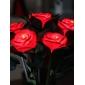 Colorful Rose Flower Light (Random Color)
