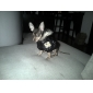 애완견/고양이용 군인스타일 후드자켓 (XS-XXL)