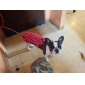 Cães Vestidos Vermelho Roupas para Cães Verão Bolinhas