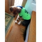 Dog Shirt / T-Shirt Dog Clothes Breathable Casual/Daily Letter & Number Green Costume For Pets