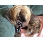 Gatos / Cães Gravata/Gravata Borboleta Preto Roupas para Cães Primavera/Outono Casamento