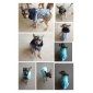 Warm Military Uniform Overcoat with Wool Collar for Dogs (Assorted Color,XS-XL)