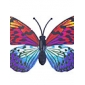 Glow-in-Dark Butterfly 6Pcs Home 3D butterfly wall stickers with Pin&Magnet  curtains Fridge Decoration