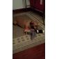 pethingtm brinquedo pato squeaking para cães