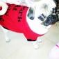 Chien Tee-shirt Vêtements pour Chien Respirable Mignon Lettre et chiffre Costume Pour les animaux domestiques