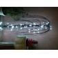 10m 100 주도 백색광 8 모드 주도 요정 문자열 램프 (220V)