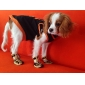 Chat / Chien Chaussures & Bottes Or / Argent Printemps/Automne Cuir PU Animal / Léopard,Chien Chaussures