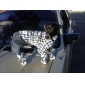 Chien Combinaison-pantalon Bleu Vêtements pour Chien Hiver Printemps/Automne Jeans Mode cow-boy