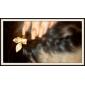 새 잎 레트로 작은 머리핀