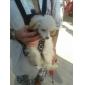 고양이 강아지 캐리어&여행용 배낭 전면 배낭 애완동물 캐리어 휴대용 통기성 리본매듭 블랙 핑크 나일론