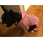 Dog Rain Coat Red / Yellow / Pink Dog Clothes Spring/Fall Letter & Number
