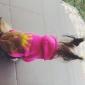 Chien Pulls à capuche Combinaison-pantalon Vêtements pour Chien Animal Costume Pour les animaux domestiques