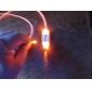 Ошейники Светодиодные фонарики Регулируется/Выдвижной Безопасность Твердый Пластик Желтый Красный Зеленый Синий Розовый