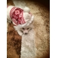 Gato Cachorro Casacos Camisola com Capuz Roupas para Cães Respirável Mantenha Quente Fashion Floco de Neve Marron Vermelho Azul Ocasiões