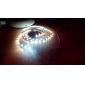 Z®ZDM 100cm 2W 60x3528SMD White Light LED Strip Lamp for Car (DC 12V)