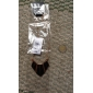 Женский Ожерелья с подвесками Геометрической формы Сплав Мода Панк Конфеты Цветовые блоки европейский Бижутерия Назначение Для вечеринок