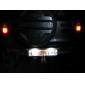 31mm 1.5W 100LM White Light LED Bulb for Car Instrument/Reading Lamp (12V)