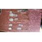 Жен. Круглый Классический Мода европейский Простой стиль Ожерелья с подвесками Слоистые ожерелья Кристалл Драгоценный камень Естественный
