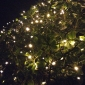 8M 60LED Solar String Lights Fine Chritmas Decoration String Lights Outdoor Whateproof Lights